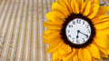 Clock in sunflower white face yellow petals funny Royalty Free Stock Photos