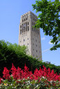 Clock tower in university of michigan Royalty Free Stock Photography
