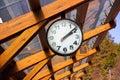 Picture : Clock dandelion vintage alarm