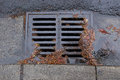 Clogged a street drain during a rain storm Royalty Free Stock Photo