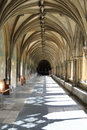 The Cloisters - Norwich Cathedral