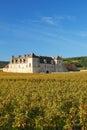 Clos de Vougeot,Burgundy,Burgund Royalty Free Stock Photo