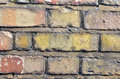 Close bricks wall Royalty Free Stock Photo