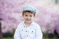 Close portrait of adorable little caucasian boy in a cherry tree Royalty Free Stock Photo