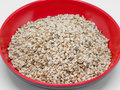 Close shot of a group of sesame seeds & x28;Sesamum indicum& x29;