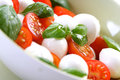 Close of tomato and mozarella in dish Royalty Free Stock Photo