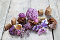 Close up aromatic dried flowers other natural things wooden surface potpourri used aromatherapy selective focus Stock Photo