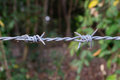 Close up barbed wire entanglement detail Royalty Free Stock Photography