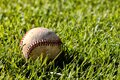 An old used baseball laying in the grass. Royalty Free Stock Photo