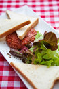 Close up beef tartar french appetizer served with green salad and toasts Stock Image