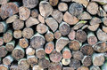 Close up on a big stack of wood stock for winter fire Royalty Free Stock Images
