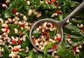 Close up of black-eye peas and collard greens Royalty Free Stock Photo