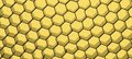 Close up of black net yellow light whole background Royalty Free Stock Images