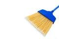 Close-up of blue broom