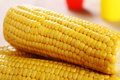 Close up boiled corn cob pink background Stock Images