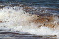 Close up of a breaking wave on the seashore. Royalty Free Stock Photo