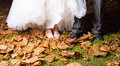 Close up of bride and groom s leg in park surrounded with dry leaf Stock Image