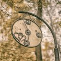 Close-up of broken decorative vintage watch in an old park. Concept of change of seasons, Autumn nostalgic mood Royalty Free Stock Photo