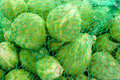 Close up from Brussels sprouts Royalty Free Stock Image