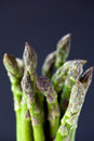 Close up of a bunch of asparagus shallow dof Royalty Free Stock Images