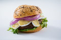 Close up of burger with cottage cheese Royalty Free Stock Photo