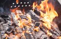 Close up of camp fire flames and fire Royalty Free Stock Image