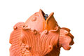 Close Up Of Carved Fish Founta...