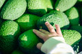 Close up of child hand holding avocado in market Royalty Free Stock Photo