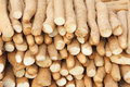 Close up chinese yam Stock Images