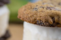 Close up of chocolate chip cookie ice cream sandwich Royalty Free Stock Photo