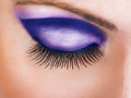 Close up of closed beautiful eye with long sexy false lashes Royalty Free Stock Images