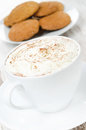 Close up of cocoa with cinnamon whipped cream oatmeal cookies and vertical Royalty Free Stock Photos