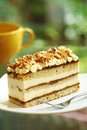 Close up coffee cake and nut Royalty Free Stock Photo