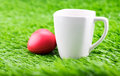Close up coffee cup with red heart on green grass Royalty Free Stock Photo