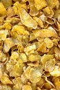 Frosted Corn Flakes Royalty Free Stock Photo
