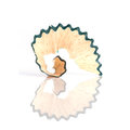 Close up color pencil shaving isolated on white Royalty Free Stock Photo