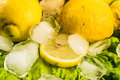 Close up composition of fresh lemons and ice on salad Royalty Free Stock Photo