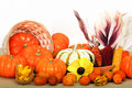 Close up composition of pumpkins, nuts and corns Royalty Free Stock Photos