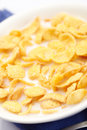Close-up of a corn flakes Royalty Free Stock Images
