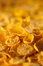 Close up of cornflakes Royalty Free Stock Images