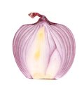 Close up of cut red onion Royalty Free Stock Photo