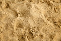 Close up of damp due to rain beach sand with animal and human footsteps Royalty Free Stock Photography