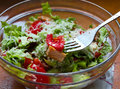 Close up of a delicious fresh salad made tomatoes lettuce chicken and olive oil Stock Image