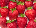 Close-up of delicious ripe strawberries Royalty Free Stock Photos