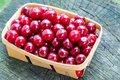 Close-up of delicious sweet cherries in a little wooden basket, Royalty Free Stock Photo