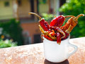 Close up of dried red peppers in a cup placed at the window with view towards the garden Stock Photos