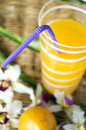 Close up drinking straw Royalty Free Stock Photography
