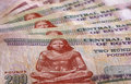 Close up of Egyptian pounds Royalty Free Stock Photo
