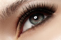 Close-up eye with fashion light natural make-up, extra long and volume eyelashes Royalty Free Stock Photo