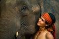 Picture : Close up face elephant  faces spaces
